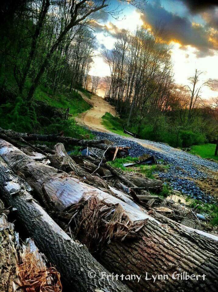 Photography Showcase: ~Brittany LynnGilbert~